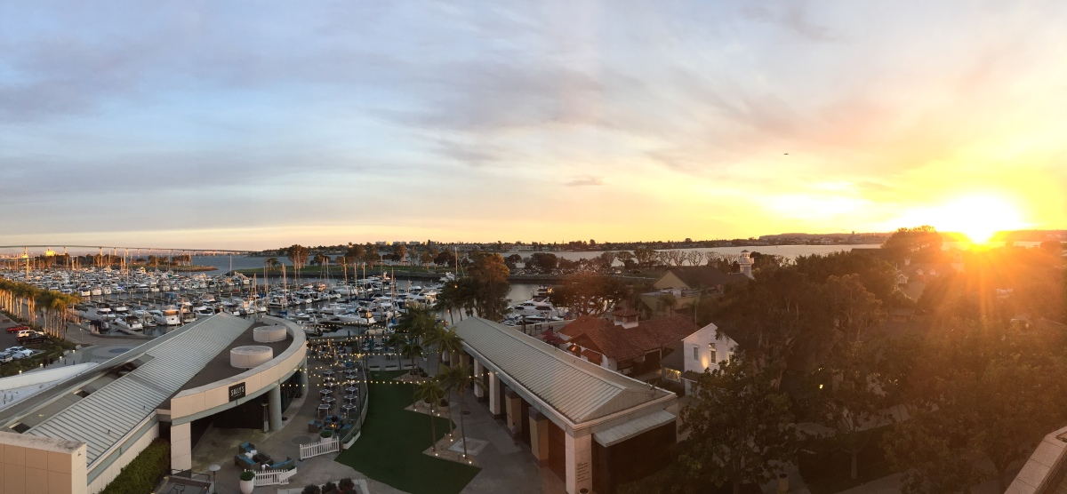 AASV 2018: A successful meeting in San Diego