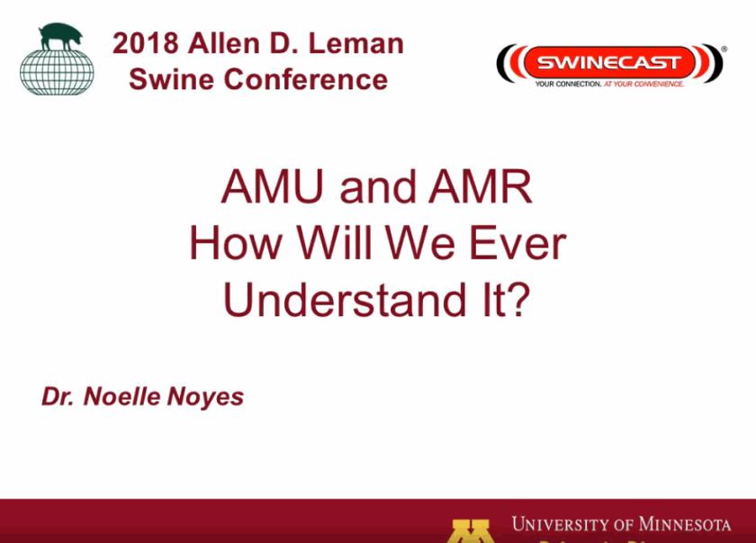 Noyes Leman 2018 AMR understanding
